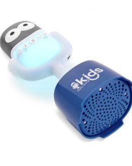 SMK4453 Bluetooth Karaoke Machine For Children